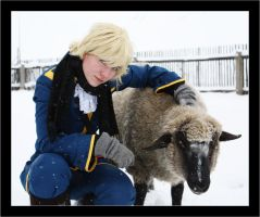 Wolfram and T-Zou in winter :- by Rollwurst