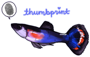 Thumbprint the Betta by ashleigheperry