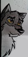 Balto drawing by ArticWolf14