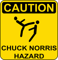 Chuck Norris by Mutar