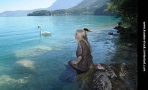 Swan Lake 9 by Kuoma-stock