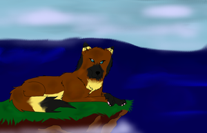 On The Cliff :FA-GA: by TlMBER