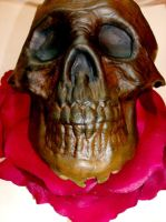 Leather Skull by D4RK4NG3LX