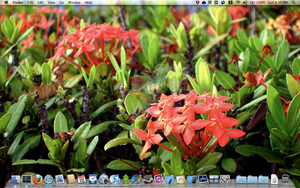 Mac OS X Desktop, 2010-08-22 by BoltClock