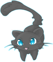 Nightfall the Kitten by TehButterCookie