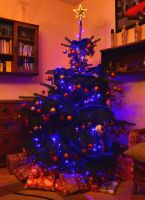 Christmas tree and presents underneath by MadelinePL