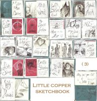 Little copper sketchbook (3) by GodessFae