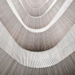 wooden curves no.2 by herbstkind