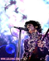 Prince by LaGolding