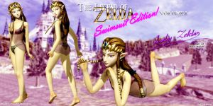 LoZ: Swimsuit Edition Vol. 1 by DarklordIIID
