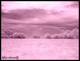 Landscape III .Infrared. by misseccles