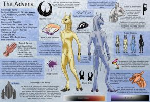The Advena: Ref by Naeomi