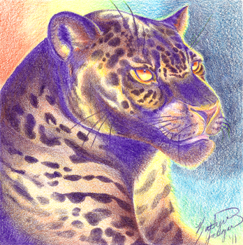 Sunset Panther by goofoofighter