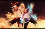 One Piece - Firebirds by TheZephyrSong