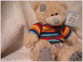 Teddy2 by RitaFromRussia