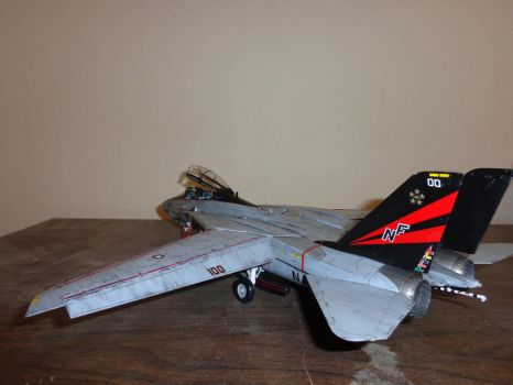 F 14 Weathered 005 by Deamand
