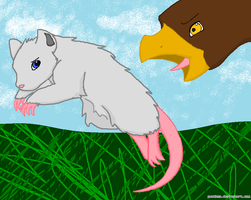 A RAT AVOIDING A HAWK by Panthen