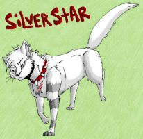 SilverStar AT by hakura-lives