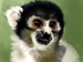 Le Monkey by DiceNwn
