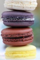 macaroons 2 by tpaulanny