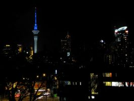 Auckland at night by VapourNZ