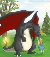 pokeaday 11-18-2011 Charizard by Pokeaday