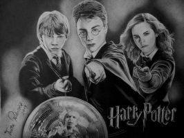 The Golden Trio by Teuta313