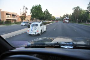 Herby, the Love Bug by RayMackenzie