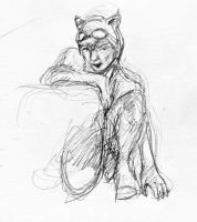 Catwoman Sketches page 3 by artybel