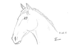 Horse -sketch- by Emma-is-drawing