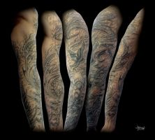 Serpent Warrior Full Sleeve by Loren86
