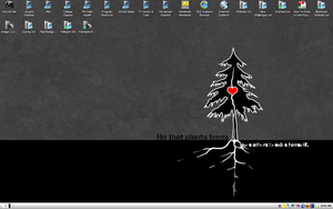 My Desktop by LosingSarah