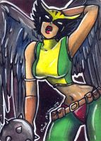 hawkgirl 1 by mainasha