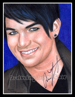 Adam Lambert - American Idol by xnicoley
