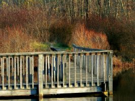 Gorman Boardwalk V by MadGardens
