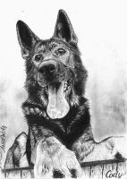 German Sheperd by ArtiaWolf