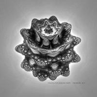 Fractal Study in Blk and White by TomWilcox