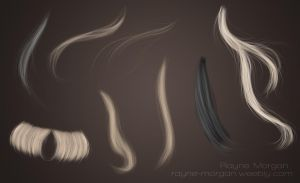 RM - Hair Strands 02 by RayneMorgan