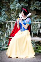 Snow White's fortune by straywind