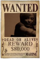 Nami Wanted Poster by NinjaYuffie16