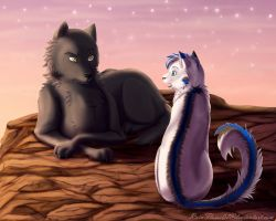 Evening Chat- Commission by x-RainFlame-x
