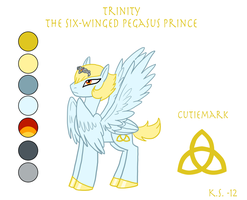 MLP Pegasus OC Trinity by The-Clockwork-Crow