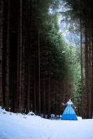 Snow White - 5 by daguerroty-pe