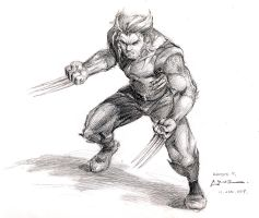 Wolverine Sketch by Cruuzetta
