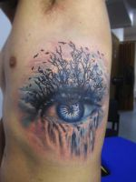 Eye Waterfall by SerenityInkMilwaukee