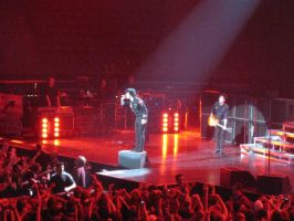 Green Day 14.07.09 -4 by guitarlover333