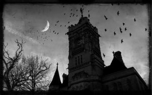 The Crow Tower. by l8
