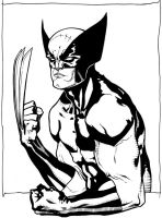 Wolverine commission by timothygreenII