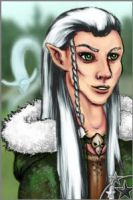 Mandavar the elf by Schneeauge
