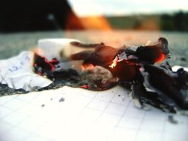 Burn, you piece of paper. by Diannnaa